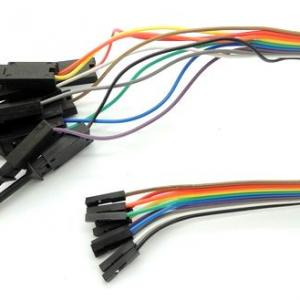 10pins Test Clip Cavo 30CM Length Black